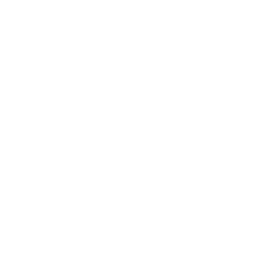 Figure 8 Software and Web Design